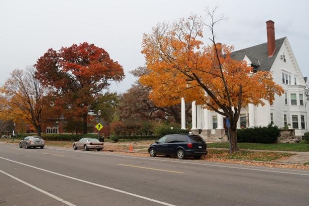 Fall in St. Paul, MN