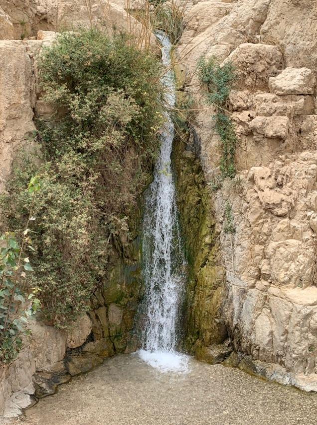 Fuera de jerusalén 4