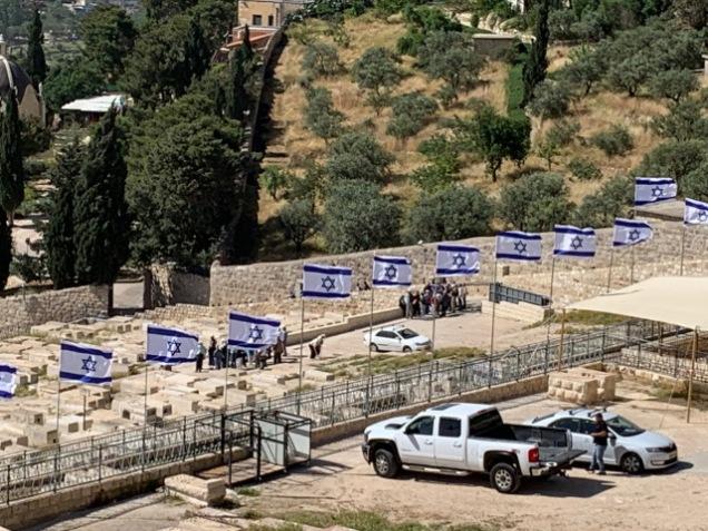 Israelis flags
